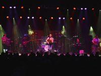 ZMF, Freiburg, Jupiter Jones, Young Rebel Set, 7.7.2012,