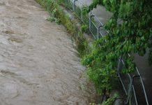 elz hochwasser waldkirch kollnau
