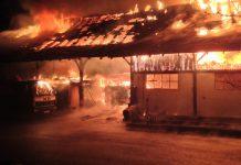 Brand in Waldkirch war Brandstiftung die Kripo sucht Zeugen