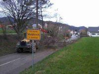 Foto: Stadt Waldkirch