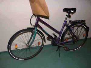 fahrrad frauenleiche dreisam fahndung polizei