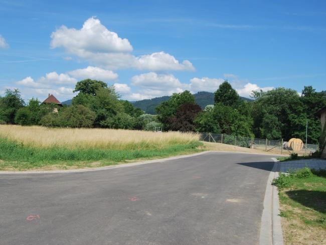 Waldkirch Streit Um Bauland Eskaliert