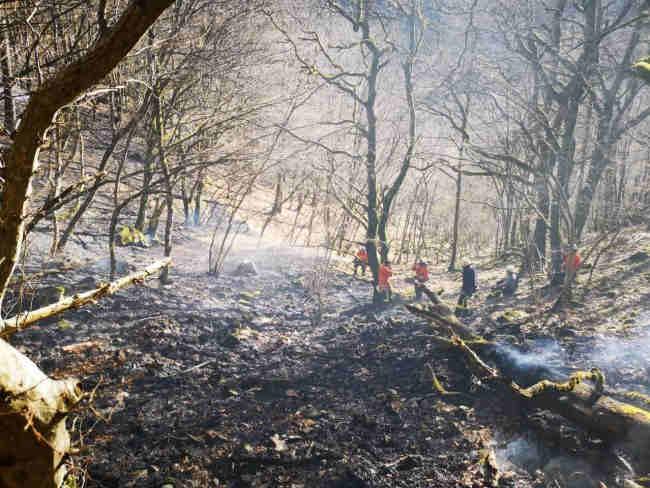 waldbrand in simonswald
